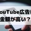 YouTube広告の視聴単価やクリック単価からわかった費用対効果とは