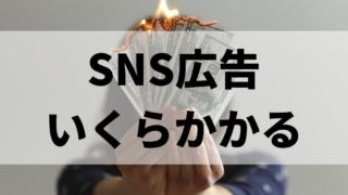SNS広告の費用